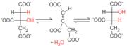 Reacción citrato-isocitrato
